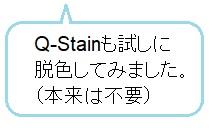 Q-Stainも試しに脱色してみました(本来は不要)