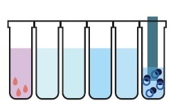 M8-H 核酸の溶出