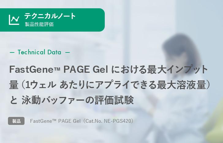 【製品性能評価】FastGene™ PAGE Gel における最大インプット量と泳動バッファーの評価試験