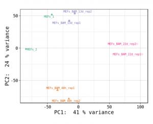 図2 主成分分析