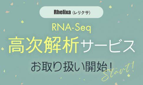 Rhelixa RNA-Seq 高次解析サービス