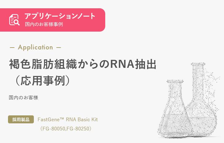 【お客様事例】褐色脂肪組織からのRNA抽出(応用事例)