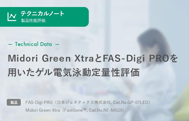 【製品性能評価】Midori Green XtraとFAS-Digi PROを用いたゲル電気泳動定量性評価